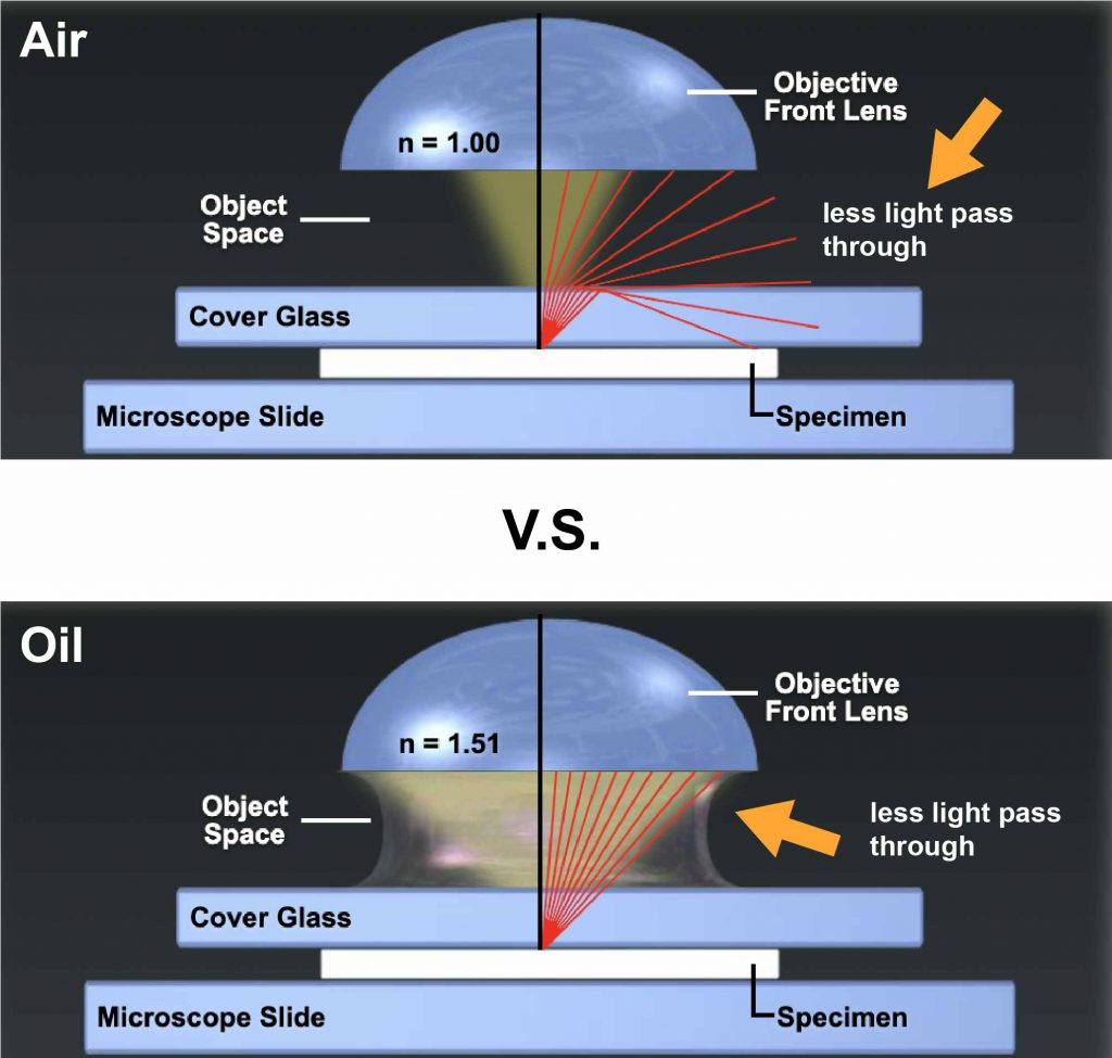 difference of passing light between  with and without microscope immersion oil.