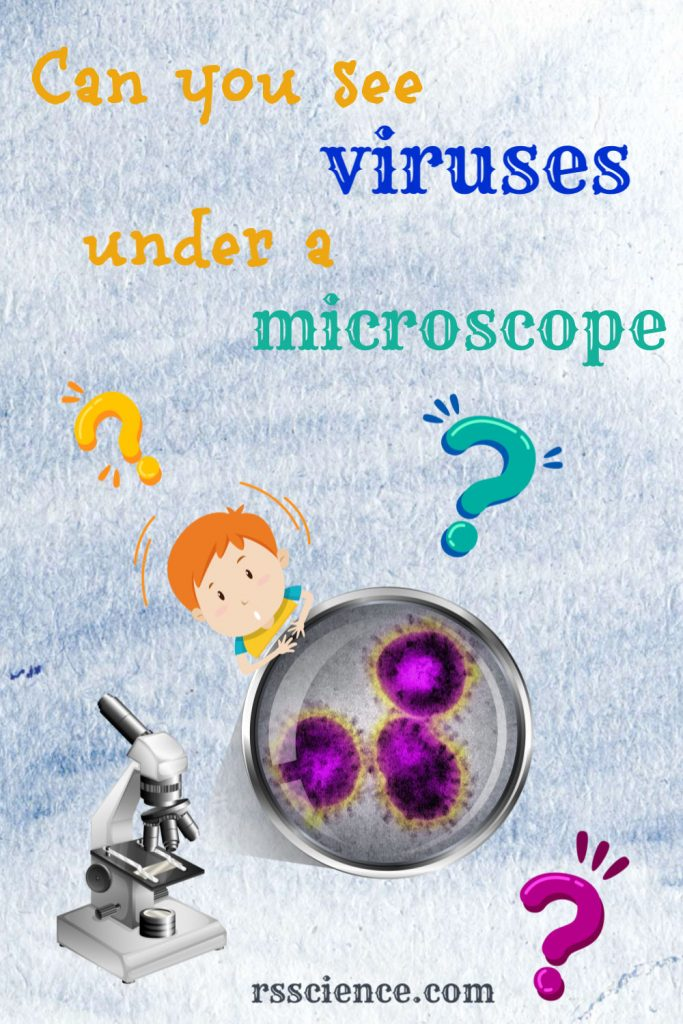 can-you-see-viruses-under-a-microscope