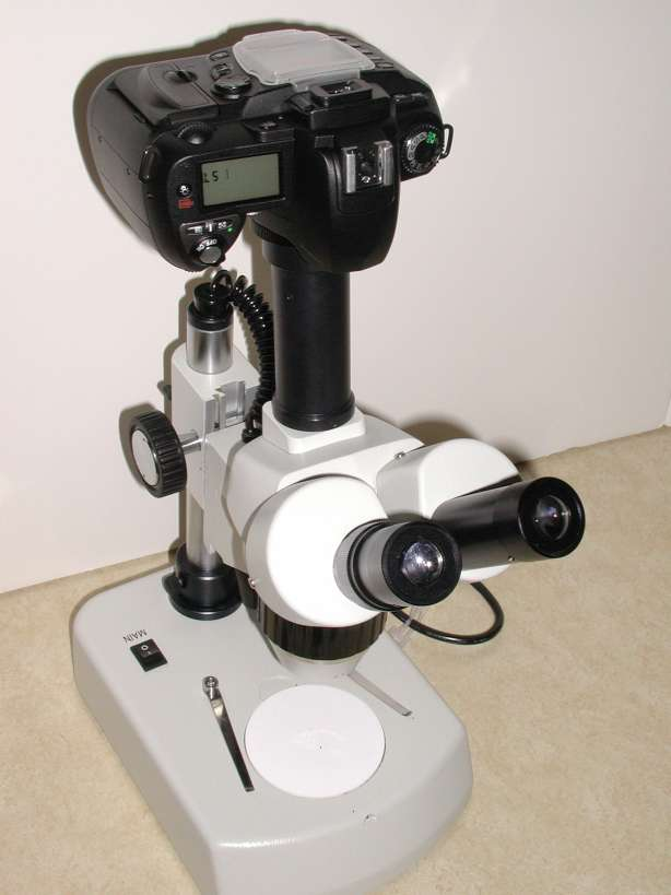 mounting-DSLR-camera-stereo-microscope