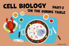 Cell Biology on the dining table