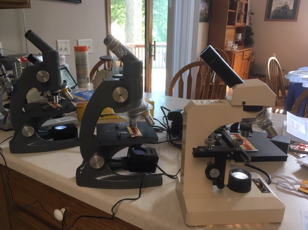 microscope-with-plastic-wrap-setup