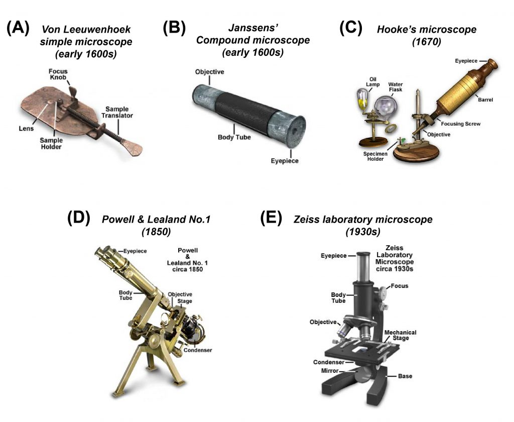 antique compound microscope history