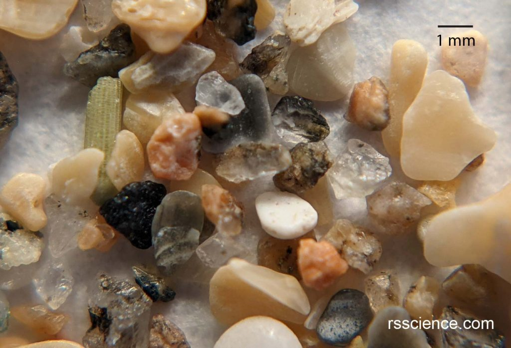 sand-from-bar-harbor-50x-magnification