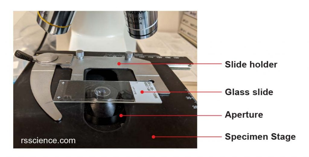 microscope-mechanical-stage