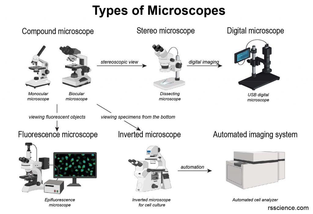 types of microscope compound digital stereo electron atom force