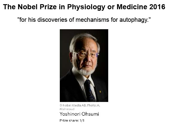 nobel-prize-in-physiology-2016